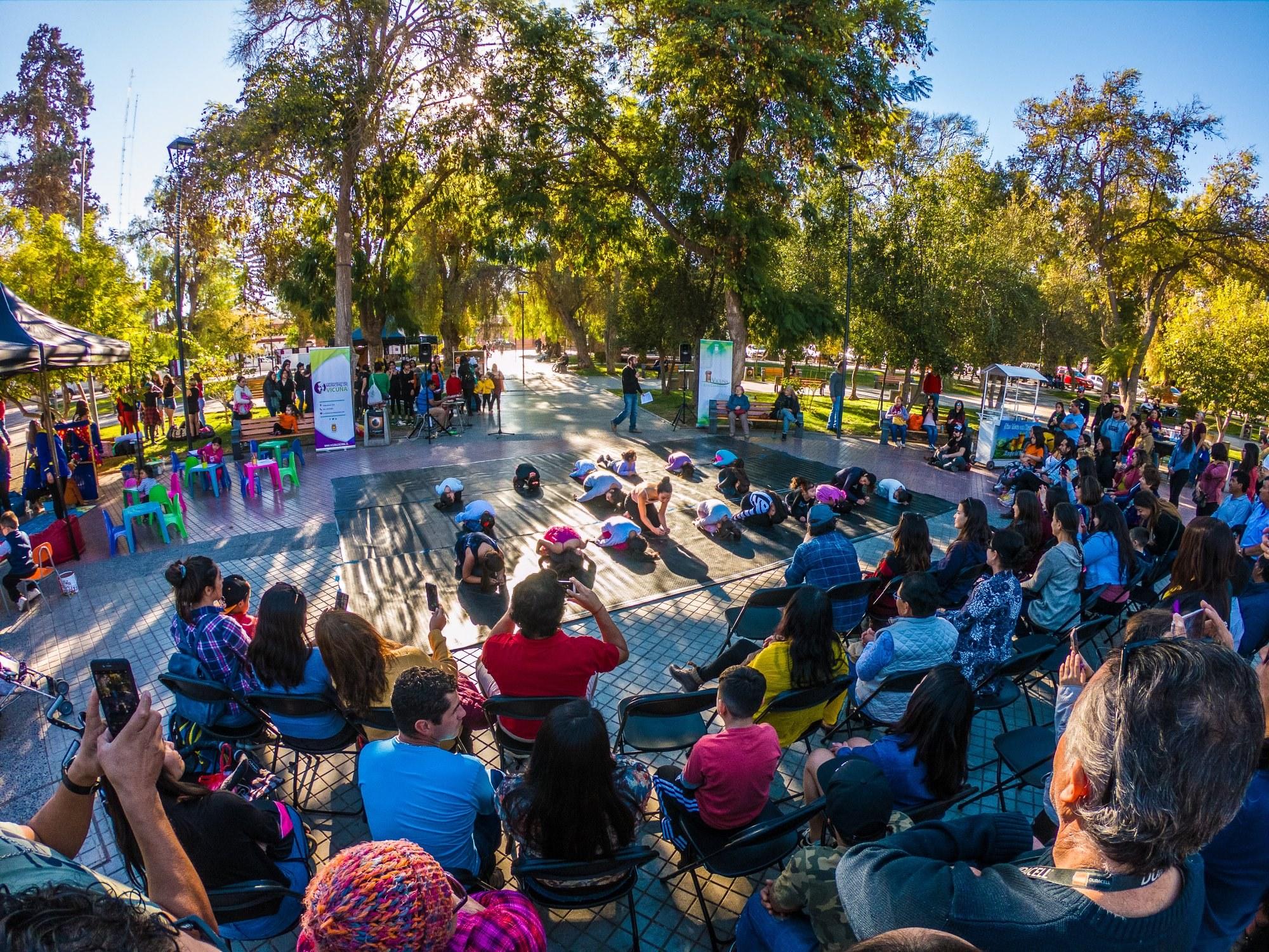 Vicuña da inicio a Cultura en tu Plaza